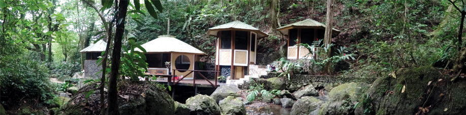 Indulge Your Mind Body & Soul At The Rainforest Spa