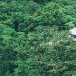 Luxury Escapes Fiji Resort