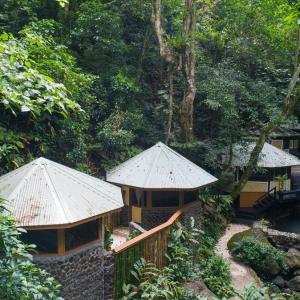 Rainforest-Spa-4-Web